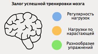 Составляющие тренировки мозга